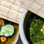 メダカ鉢の蓋