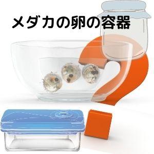 メダカの卵の容器